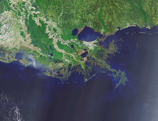 Oil and gas industry must pay to fix damage done to Louisiana coast: Opinion | NOLA.com